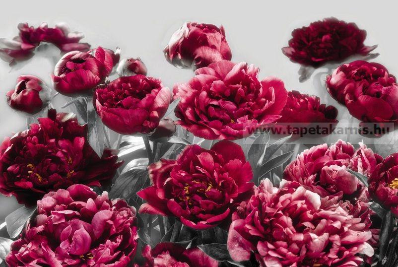 Poszter virág XXL4-002