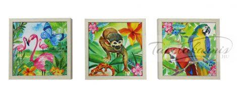 3db dzsungeles canvas kép 4689