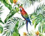 Greenery poszter Parrot I.  11661-4.