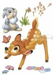 Bambi falmatrica 14043.