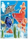 Nemo falmatrica 14051.