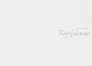 Black&white tapéta 1909-18.