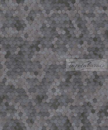 Dimensions by Edward van Vliet tapéta 219581