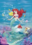 Ariel poszter 4-4020.