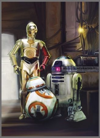 Star Wars poszter 4447.