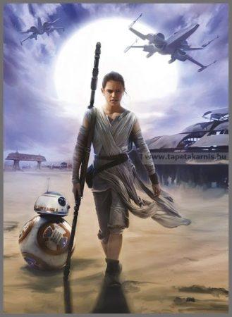 Star Wars poszter 4448.