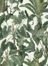 Paradisio tapéta 6303-07.