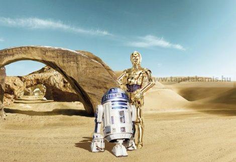 Star Wars poszter 8-484.