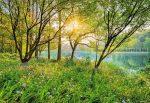Tavaszi tó poszter 8-524.