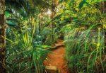 Dzsungel poszter 8989.