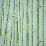 DM zöld bambuszos öntapadós tapéta DM-9145.