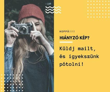 Lapfüggöny panelkarnishoz kék színben