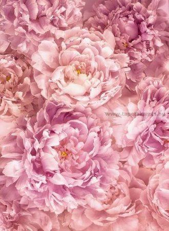 Virág poszter xxl2009.
