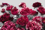 Poszter virág XXL4-002. Temptation