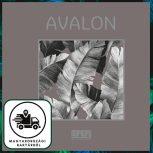 .Avalon KÉSZLETES