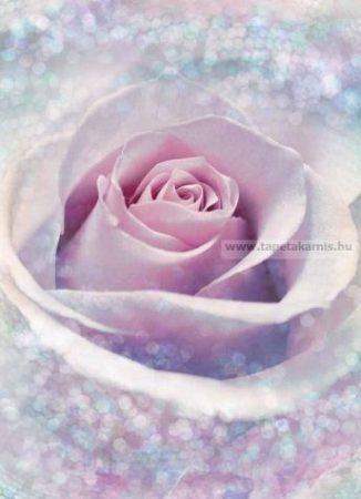Poszter xxl2-020 Delicate Rose.